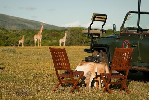 temba-game-reserve-grahamstown-accommodation-21